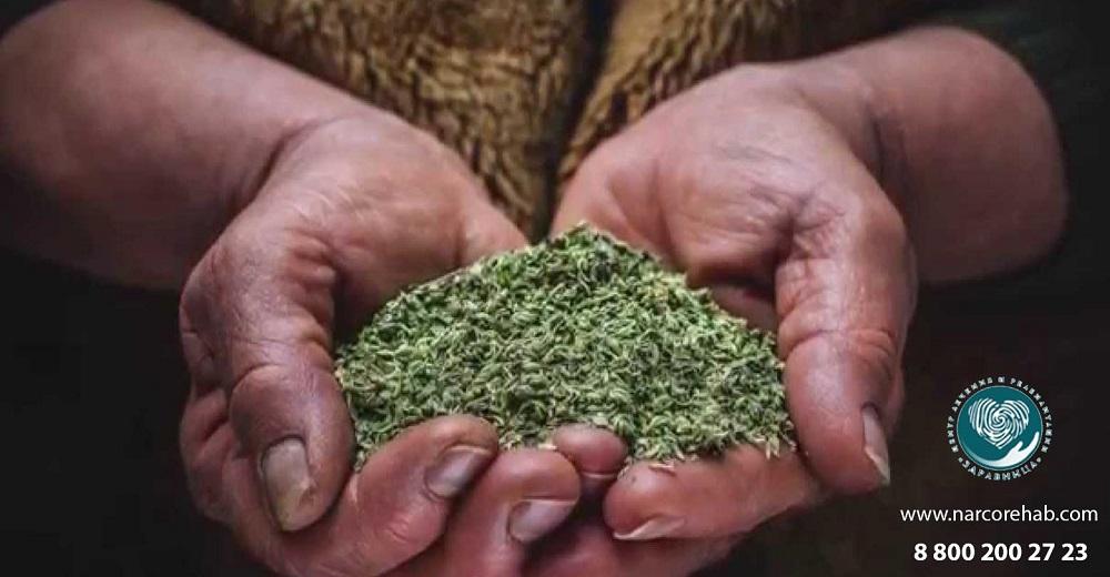 ТОП самых опасных наркотиков мира
